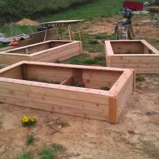 Plant Beds